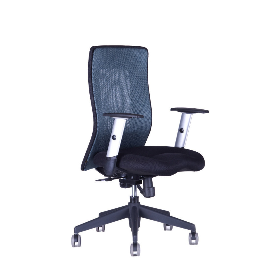 CALYPSO XL BP 1211 antracit